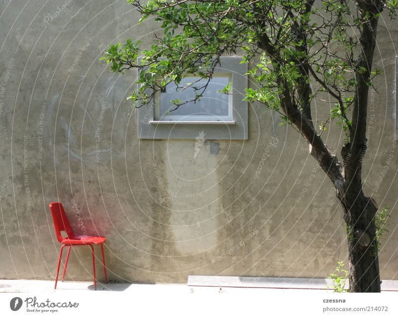 solitary chair Baum Sommer ruhig Erholung Wand Fenster Frühling Mauer Design Fassade Pause Stuhl Terrasse Betonwand