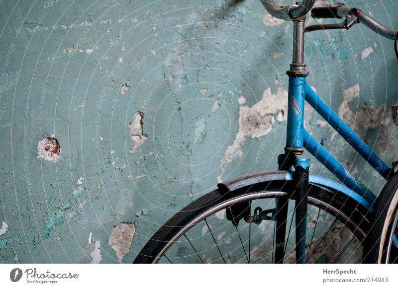 Hinten im Hof Mauer Wand Fahrrad alt authentisch dreckig kaputt trashig trist blau grün Putz Loch Farbe Detailaufnahme Bildausschnitt Anschnitt türkis