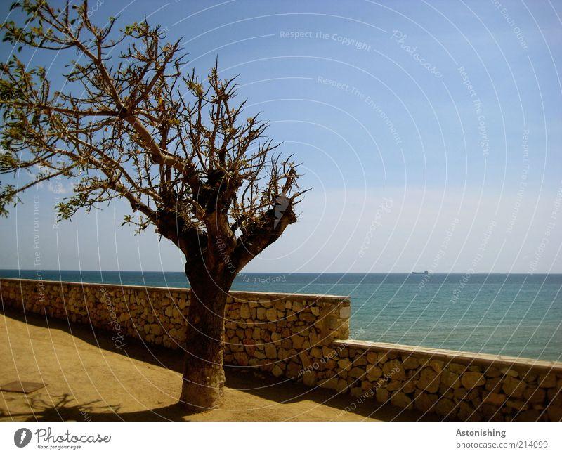 Urlaubserinnerungen zum 200er Himmel Natur blau Wasser Baum Pflanze Ferien & Urlaub & Reisen Meer Sommer gelb Umwelt Wand Landschaft Sand Stein Küste