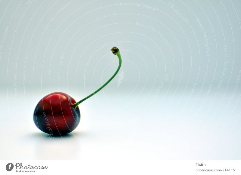 just Kirsche Lebensmittel Frucht Ernährung Bioprodukte Vegetarische Ernährung Diät ästhetisch frisch glänzend lecker rund sauer schön süß rot weiß Steinfrüchte