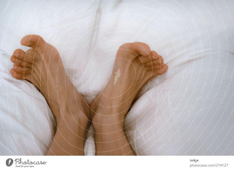 Morgäääääääääääääähn! weiß Erholung Leben Gefühle Glück träumen Fuß Zufriedenheit liegen frisch ästhetisch Fröhlichkeit schlafen Häusliches Leben Bett Wellness