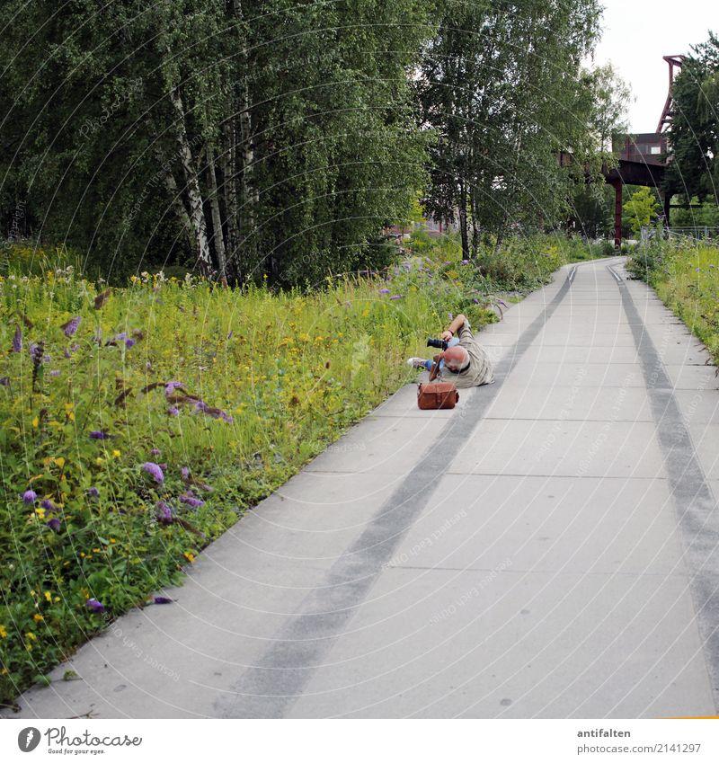 Bei der Arbeit Mensch Mann Sommer grün Baum Freude Blüte Senior lustig Wege & Pfade Glück Stadt Essen Freizeit & Hobby maskulin Park Körper