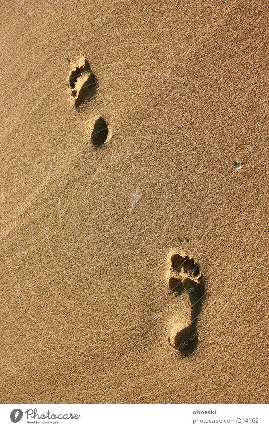 Sandspuren Meer Sommer Strand Ferien & Urlaub & Reisen Einsamkeit Bewegung Wege & Pfade Suche Hoffnung Tourismus Spuren Sehnsucht Warmherzigkeit Fußspur Fernweh