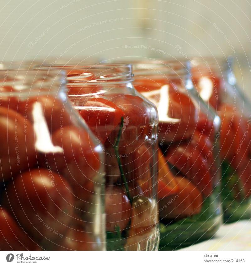 Tomaten in Gläsern Lebensmittel Gemüse Ernährung Einmachglas Glas Tomatenglas Delikatesse konservieren einmachen einlegen Haltbarkeit selbstgemacht genießen