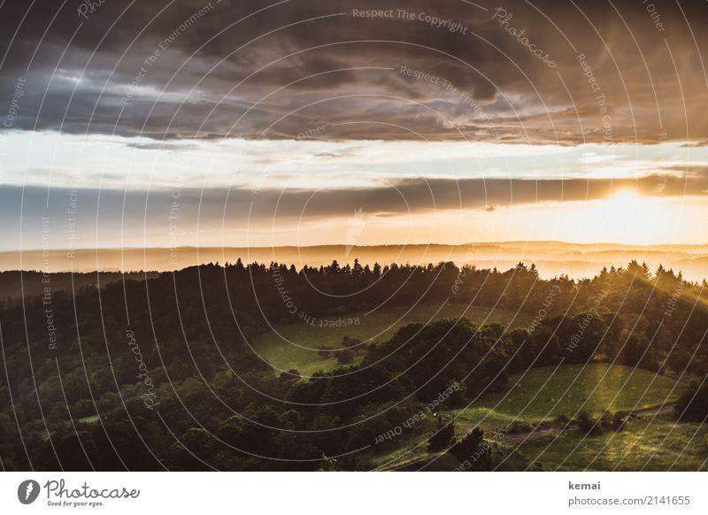 Wetterabend ruhig Freizeit & Hobby Abenteuer Ferne Freiheit Natur Landschaft Erde Wolken Gewitterwolken Sommer Unwetter Wärme Wald Hügel leuchten authentisch