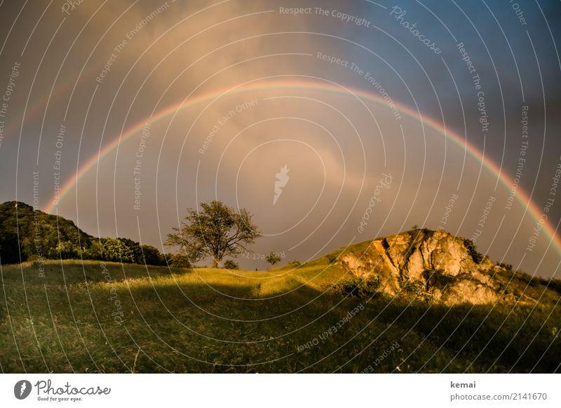 The full monty Leben harmonisch Wohlgefühl Zufriedenheit ruhig Ausflug Abenteuer Freiheit Umwelt Natur Landschaft Himmel Gewitterwolken Sonnenlicht Sommer