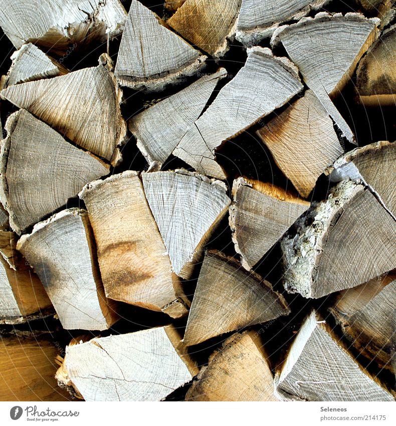 Ordentlich Holz vor der Hütte Freizeit & Hobby heimwerken Umwelt Natur Baum Brennholz liegen Farbfoto Außenaufnahme Menschenleer Textfreiraum links