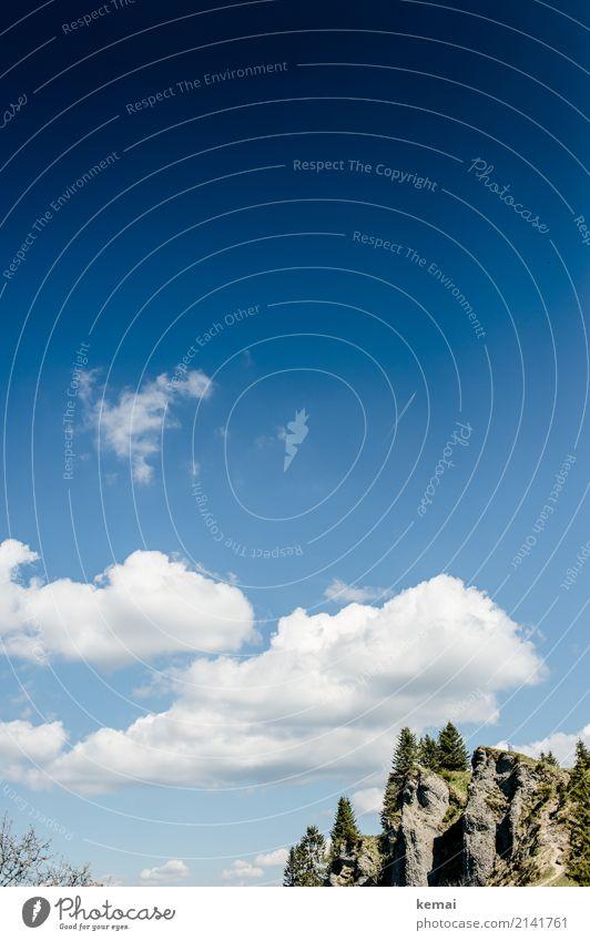 Felsen und Bäume und blauer Himmel ruhig Freizeit & Hobby Ferien & Urlaub & Reisen Ausflug Abenteuer Freiheit wandern Umwelt Natur Landschaft Wolkenloser Himmel