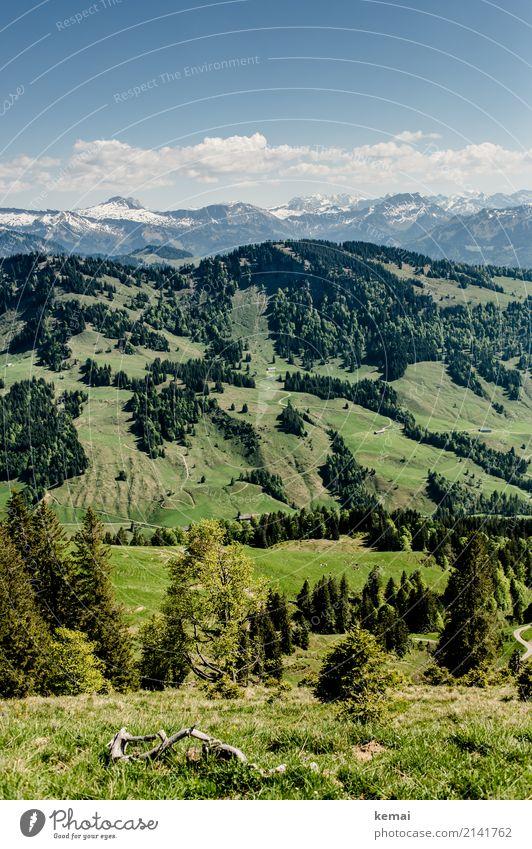 Hügel und dann Berge Himmel Natur Ferien & Urlaub & Reisen blau schön grün Landschaft Baum Erholung Wolken ruhig Ferne Berge u. Gebirge Lifestyle Wiese
