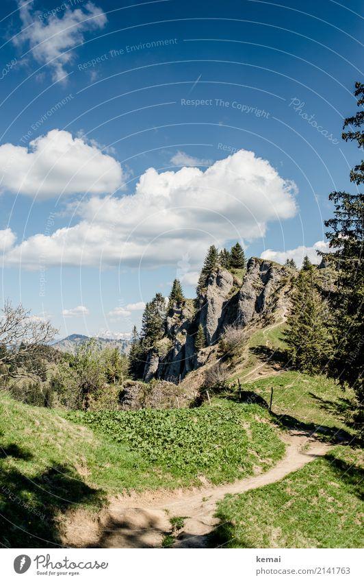 Pfad in den Bergen Himmel Natur Ferien & Urlaub & Reisen grün Baum Erholung Wolken ruhig Ferne Berge u. Gebirge Leben Wege & Pfade Wiese Tourismus Freiheit