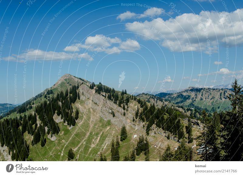Gipfel und Bäume Himmel Natur Ferien & Urlaub & Reisen Sommer schön Landschaft Baum Erholung Wolken ruhig Ferne Berge u. Gebirge Wärme Freiheit Felsen Ausflug