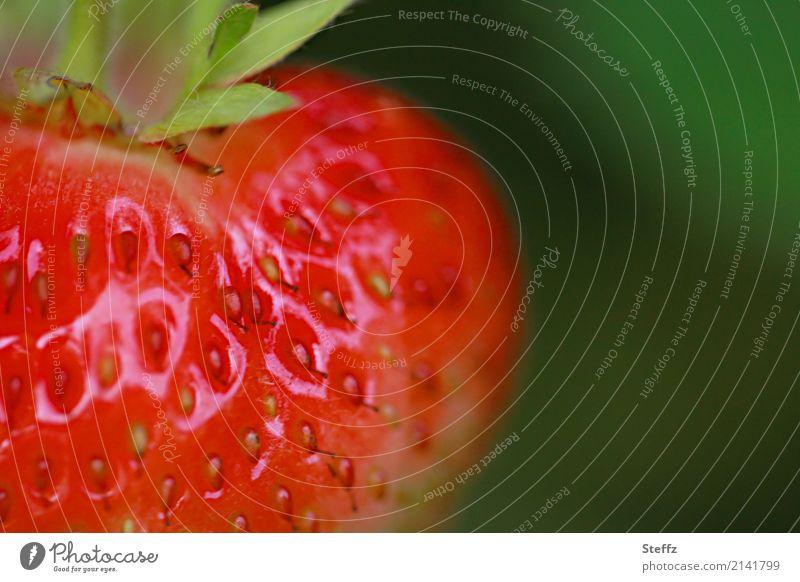 Reifezeit Lebensmittel Frucht Dessert Erdbeeren Ernährung Bioprodukte Vegetarische Ernährung Vegane Ernährung Gesunde Ernährung Natur Sommer Pflanze Nutzpflanze