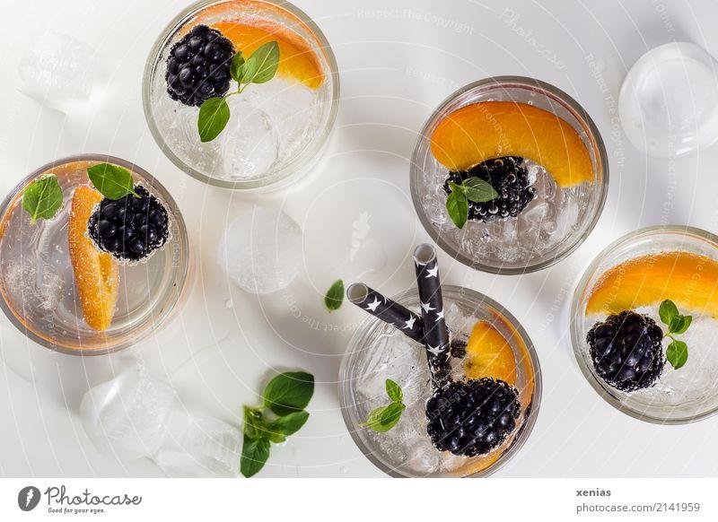 Fünf Gläser Vitaminwasser mit Brombeeren, Nektarine, Eiswürfel und Oregano Erfrischungsgetränk Bioprodukte Frucht Diät Fasten Getränk Trinkwasser Glas Trinkhalm