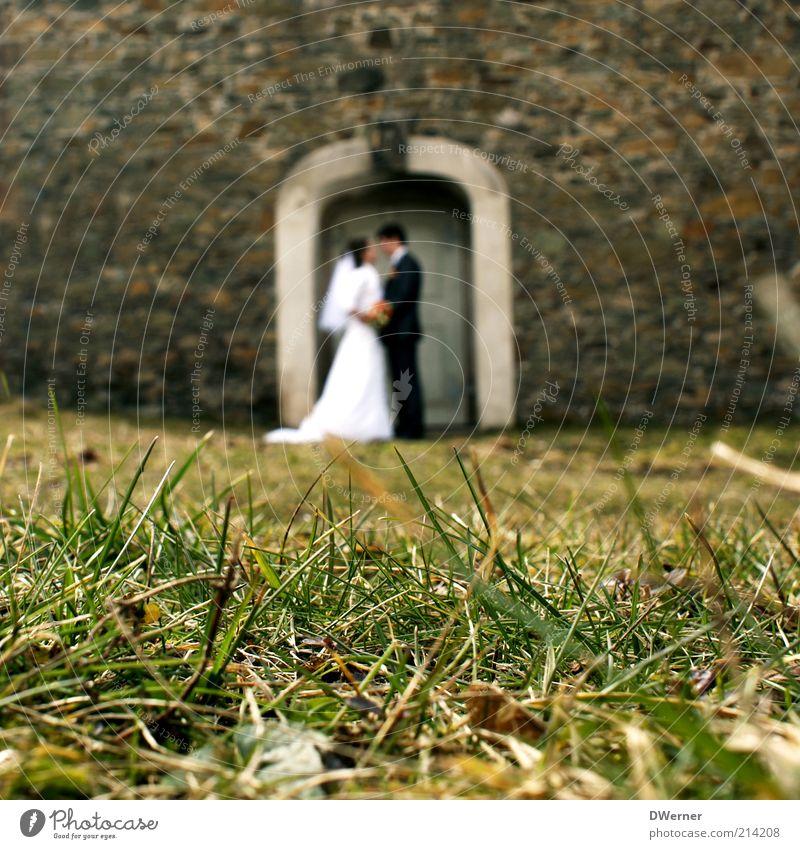 JA-Sager Mensch weiß schwarz Erwachsene Liebe feminin Gefühle Gras Stil Frühling Paar Feste & Feiern Zusammensein maskulin Hochzeit Kirche