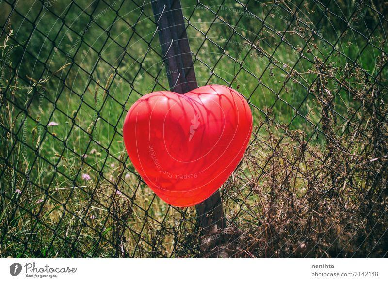 Rotes Herz formte Ballon in einem Zaun Valentinstag Natur Pflanze Gras Luftballon Metall authentisch einfach Fröhlichkeit Gesundheit schön niedlich grün rot