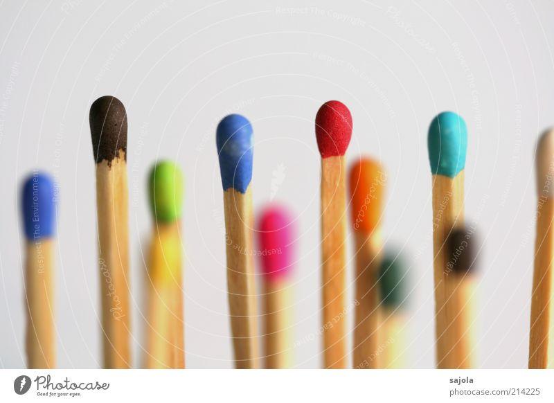 multikulti Holz mehrfarbig mehrere stehen Team Gesellschaft (Soziologie) viele Zusammenhalt Mischung Verschiedenheit Streichholz Teamwork vertikal Freisteller