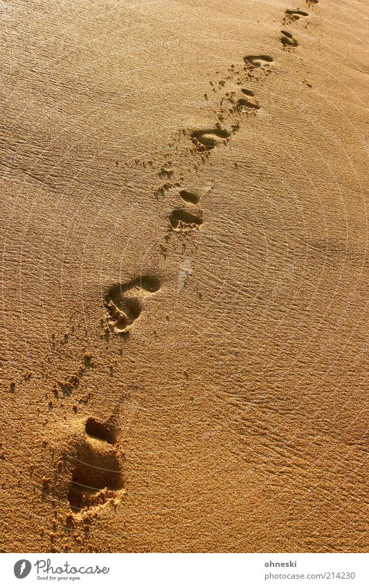 Walk the line Ferien & Urlaub & Reisen Sommer Sommerurlaub Strand Meer Fuß Fußspur Küste Sand friedlich Hoffnung Sehnsucht Fernweh Einsamkeit Freiheit Identität