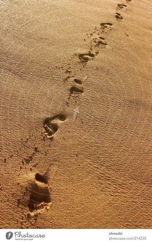 Walk the line Meer Sommer Strand Ferien & Urlaub & Reisen Einsamkeit Freiheit Wege & Pfade Fuß Sand Küste gehen Perspektive Hoffnung einzigartig Sehnsucht