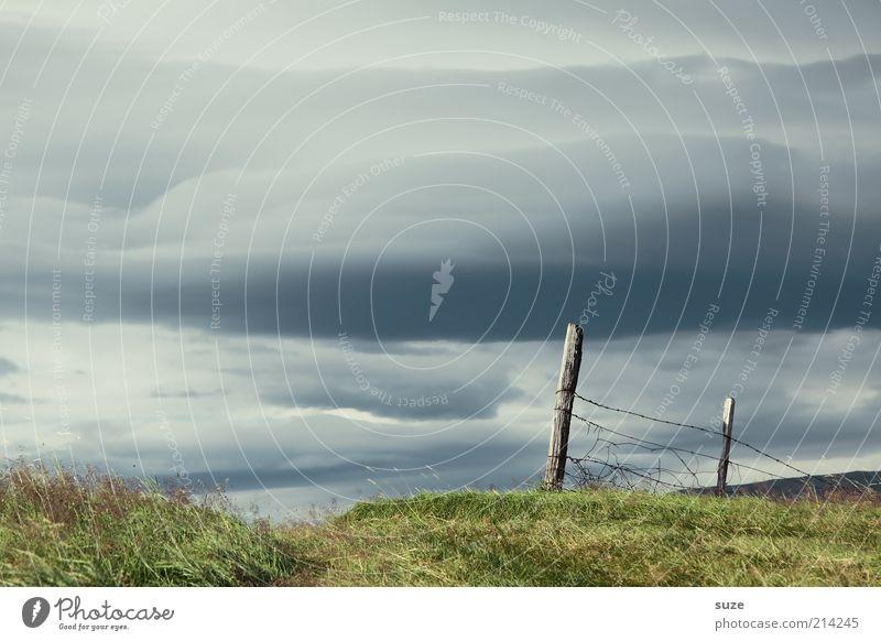 Grenzenlos Himmel Natur blau grün Sommer Landschaft Wolken dunkel kalt Wiese Gras Holz außergewöhnlich Stimmung Luft Urelemente