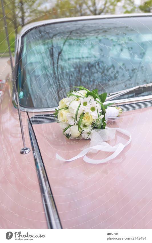 Hochzeitscadillac Religion & Glaube Liebe Glück außergewöhnlich Mode Feste & Feiern Zusammensein PKW retro ästhetisch Beginn einzigartig Romantik Ewigkeit