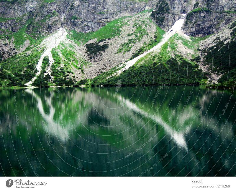 100wasser Ferien & Urlaub & Reisen Berge u. Gebirge Umwelt Natur Wasser Pflanze Gras Seeufer Erholung Flüssigkeit grün rein Polen Tatra Sauberkeit kegelförmig