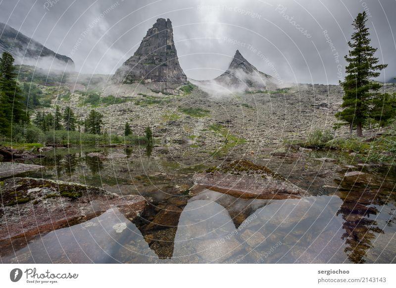 Nebelige Parabel Natur Landschaft Sommer Regen Gewitter Hügel Felsen Alpen Berge u. Gebirge Gipfel Reinheit Baum Reflexion & Spiegelung Stimmung Lichtstimmung