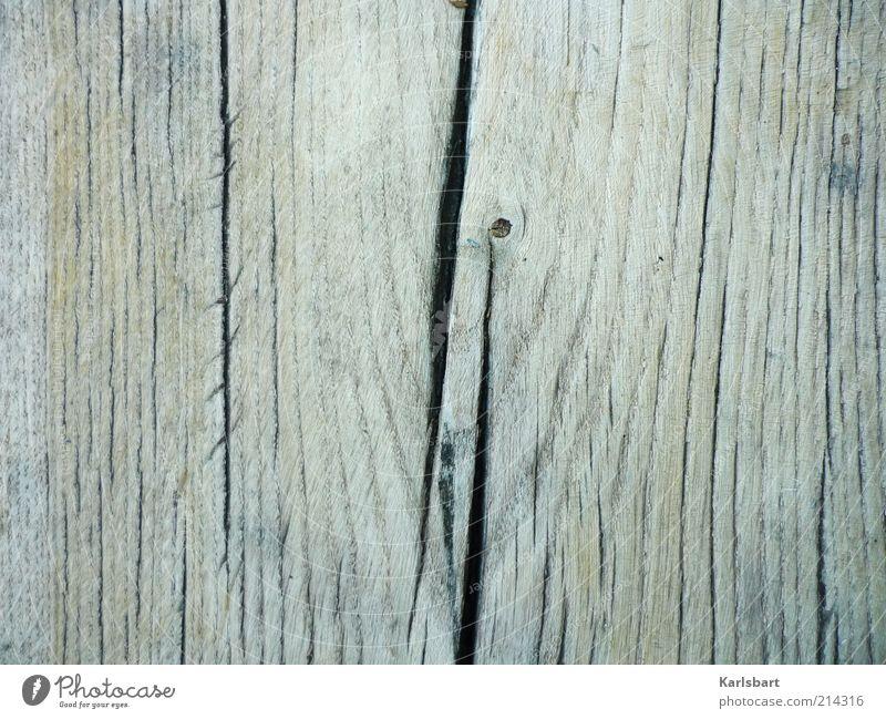 years [cut] Natur Baum Holz grau Hintergrundbild Umwelt einzigartig Baumstamm Riss Textfreiraum links Holzstruktur