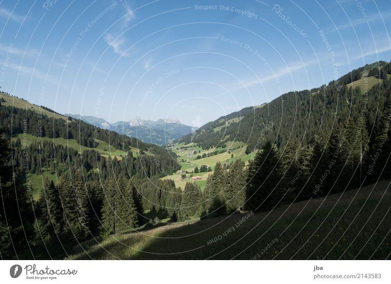 Turbachtal Himmel Natur Ferien & Urlaub & Reisen Sommer Landschaft Erholung Haus ruhig Berge u. Gebirge Sport Gras Freiheit Freizeit & Hobby Ausflug wandern