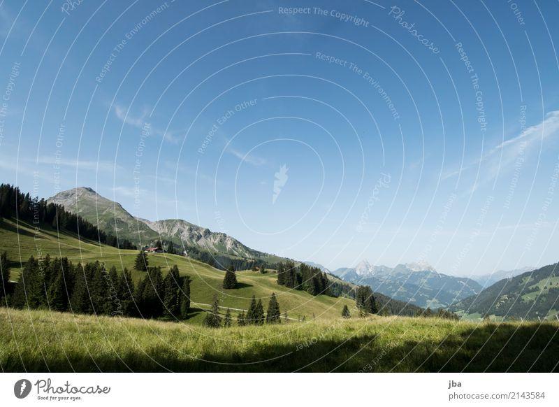 Saaner Bergwelt Himmel Natur Sommer Baum Landschaft ruhig Ferne Berge u. Gebirge Wiese Bewegung Sport Gras Freizeit & Hobby Ausflug Zufriedenheit wandern