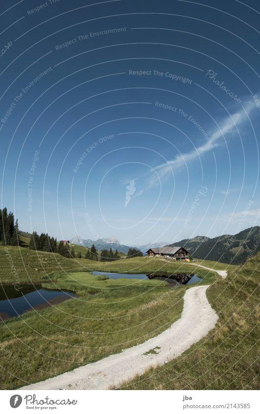 Alphütte im Berner Oberland Lifestyle Leben Wohlgefühl ruhig Freizeit & Hobby Ferien & Urlaub & Reisen Ausflug Ferne Freiheit Fahrradtour Berge u. Gebirge