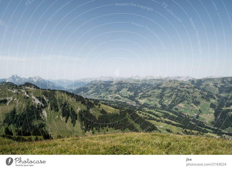 Blick ins Saanenland harmonisch Wohlgefühl Erholung ruhig Freizeit & Hobby Ferien & Urlaub & Reisen Ausflug Ferne Sommer Berge u. Gebirge wandern Sportstätten