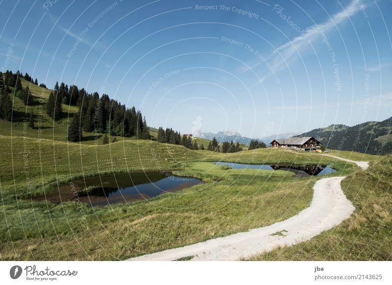 Alphütte im Saanenland Natur Sommer Landschaft Erholung Ferne Berge u. Gebirge Leben Wiese Wege & Pfade Sport See Freizeit & Hobby Ausflug wandern Fahrradfahren