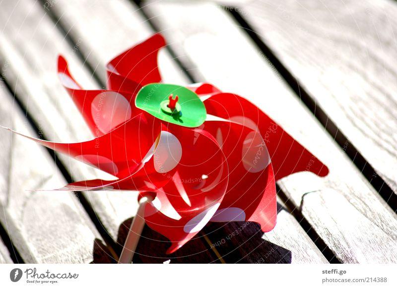 Also ich setze ja auf Windkraft! rot Spielen Holz Luft Kraft Kindheit Energie Kindheitserinnerung Spielzeug drehen Leichtigkeit Windstille Windrad gepunktet rotieren Erneuerbare Energie