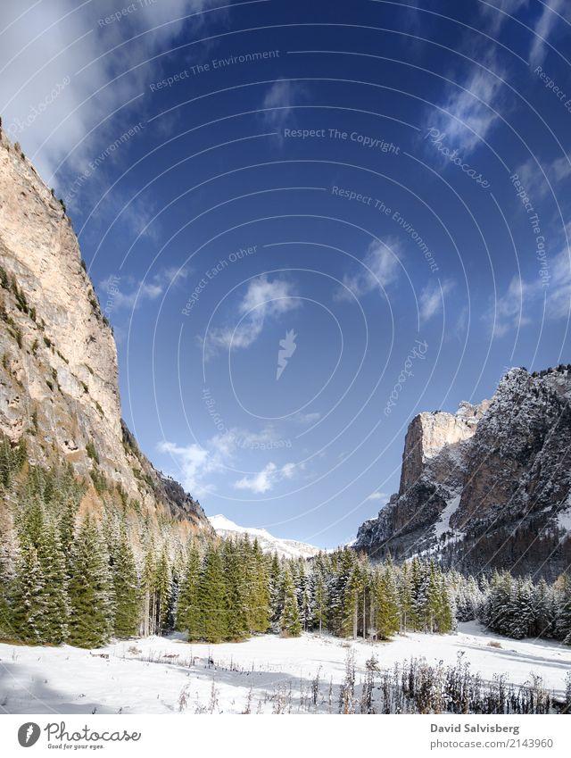 Snowy Mountains Natur Ferien & Urlaub & Reisen Baum Landschaft Erholung Einsamkeit Ferne Winter Wald Berge u. Gebirge Schnee Freiheit Tourismus Felsen Ausflug