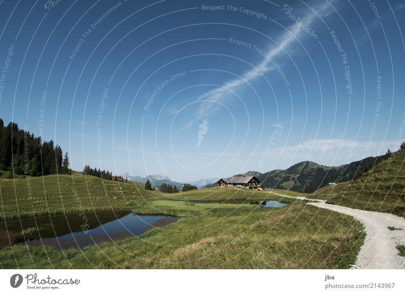 Alphütte im Saanenland Himmel Natur Landschaft Erholung Haus ruhig Berge u. Gebirge Leben Wiese Sport Gras Freiheit See Freizeit & Hobby Wohnung Ausflug