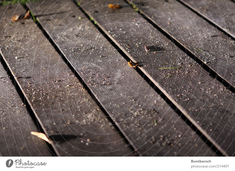 Dielenstaub Dielenboden Holzfußboden dreckig Staub Sand staubig Fuge Boden Gedeckte Farben Außenaufnahme Abend Nacht Kunstlicht Licht Kontrast Menschenleer