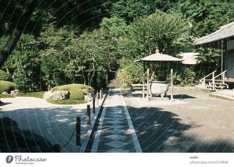 Natur schön weiß Baum grün Sommer Ferien & Urlaub & Reisen ruhig Haus Garten grau Stein Wege & Pfade Wärme Landschaft Zufriedenheit