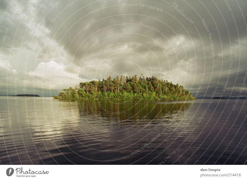 lough corrib Natur Baum Sommer Wolken ruhig Ferne Herbst Landschaft Umwelt Stimmung See Wellen Ausflug Insel Idylle Unwetter
