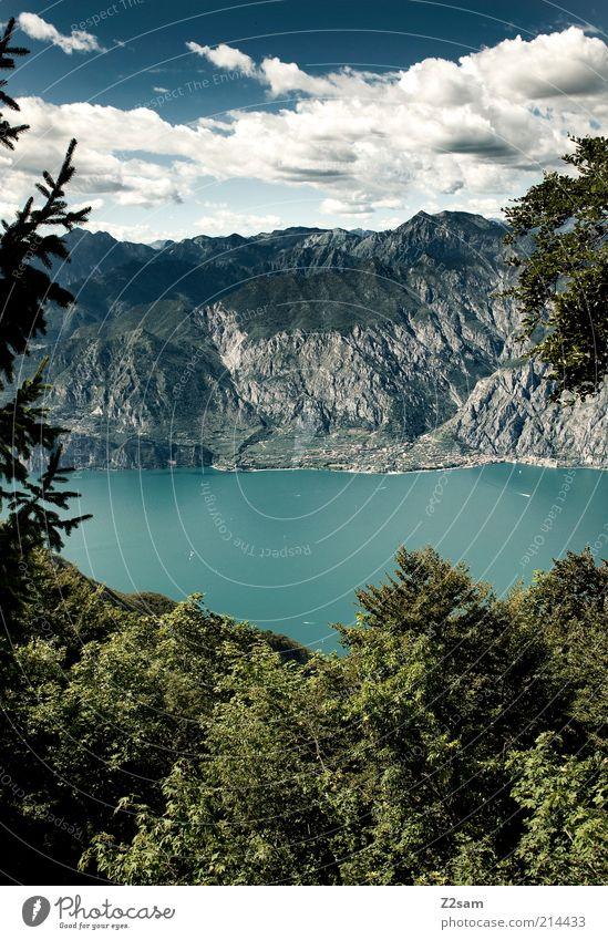 von oben herab Umwelt Natur Landschaft Himmel Wolken Sommer Baum Sträucher Wald Felsen Alpen Berge u. Gebirge Gipfel See Gardasee Erholung genießen