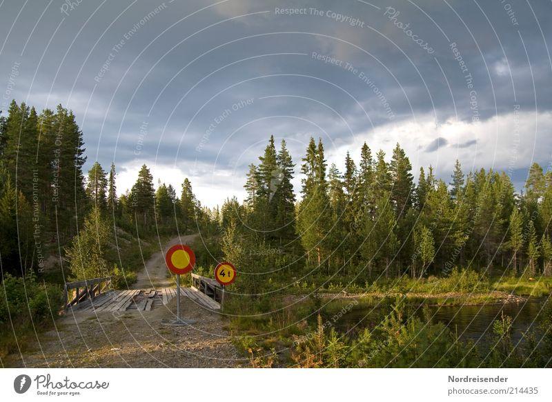 Augen zu und durch Natur Baum Sommer Ferien & Urlaub & Reisen Wolken Wald Straße Freiheit Landschaft Umwelt Wege & Pfade See Wetter Schilder & Markierungen