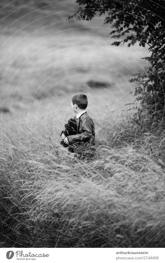Junge mit Teddybär im hohen Gras Mensch Kind Natur Pflanze Sommer Landschaft Einsamkeit Wald Leben Umwelt Familie & Verwandtschaft Freizeit & Hobby Ausflug