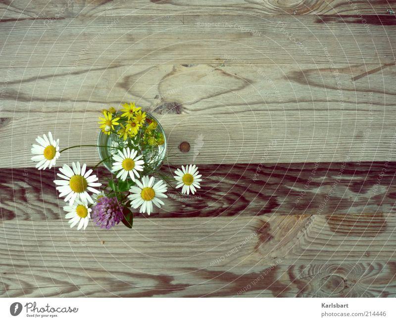in love. Pflanze Sommer Freude Blume Erholung Holz Glück Stil Frühling Linie Gesundheit Tisch Lifestyle Häusliches Leben Dekoration & Verzierung Blumenstrauß