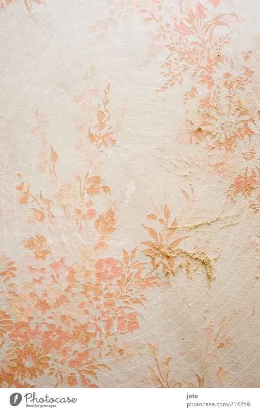Tapetenmuster Stil Design Kunst Pflanze Blume Mauer Wand alt ästhetisch dreckig hell retro schön rosa weiß fein zart orange Hintergrundbild Muster