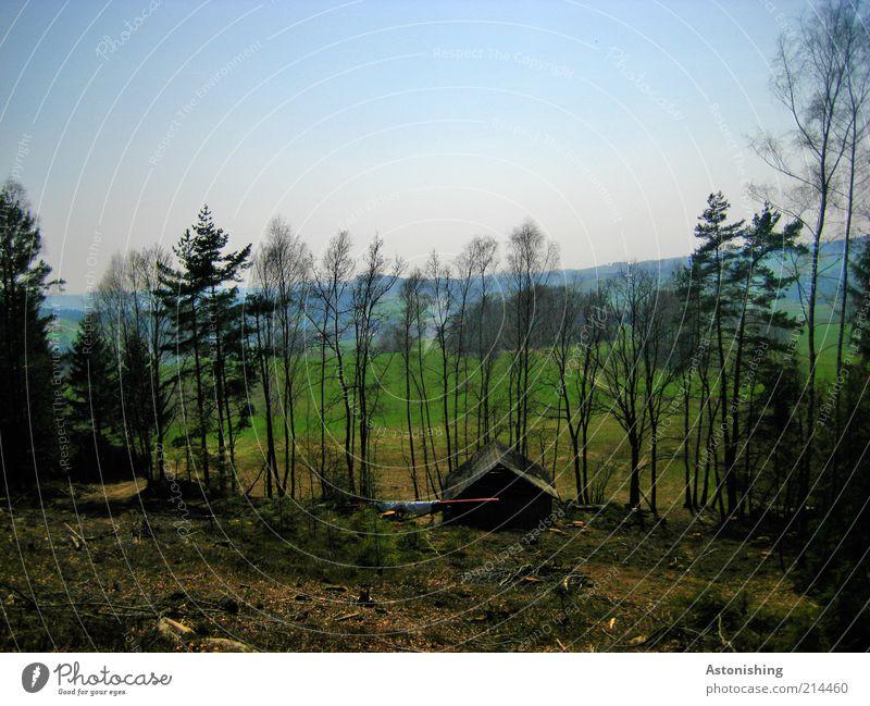 die Holzfällerhütte Himmel Natur blau grün Baum Pflanze Sommer Blatt schwarz Haus Wald Wiese Umwelt Landschaft Wärme