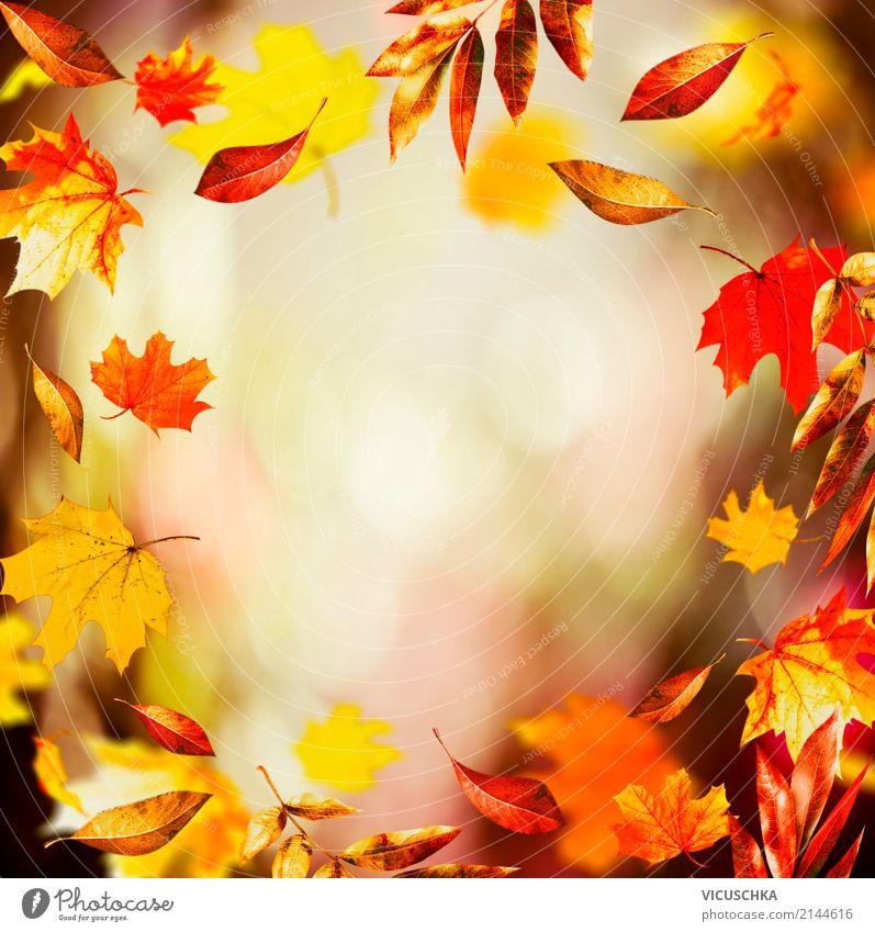 Herbst Hintergrund Mit Schonen Fallende Blatter Ein Lizenzfreies