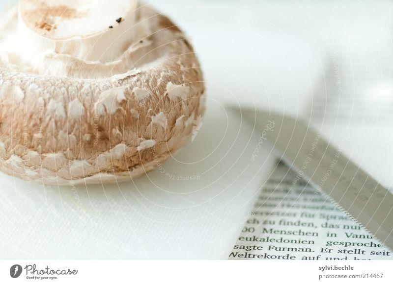 Gleich gibt´s Mittag ... weiß schwarz Ernährung braun Lebensmittel Zeitung Gemüse lecker Appetit & Hunger Pilz silber Schneidebrett Mittagessen Bioprodukte Messer geschnitten
