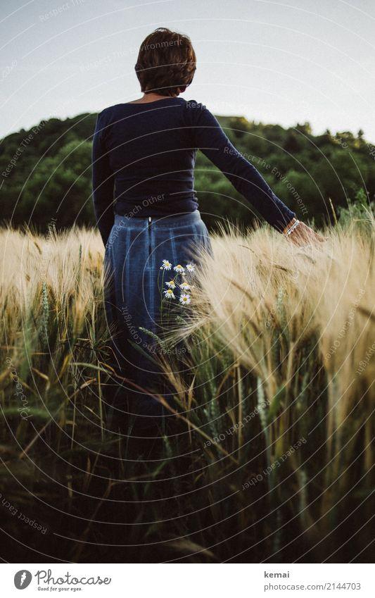 Gedankenverloren im Feld Frau Mensch Natur Erholung ruhig Erwachsene Leben Lifestyle feminin Freiheit Ausflug Freizeit & Hobby Zufriedenheit stehen authentisch