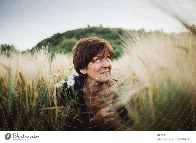 Ins Feld eintauchen Frau Mensch Natur Pflanze schön Blume Erholung Freude Erwachsene Lifestyle Leben Senior feminin Stil Glück Spielen