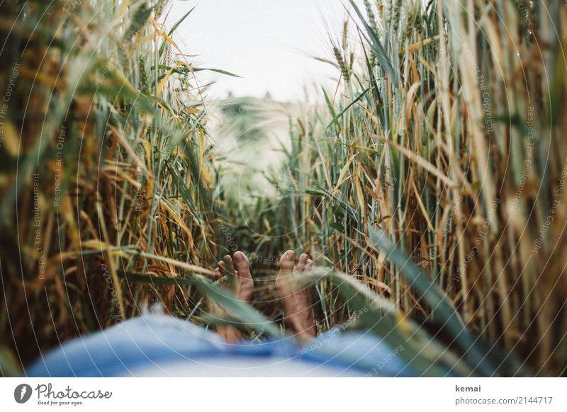 Sommerchillen Lifestyle Wellness Leben harmonisch Wohlgefühl Zufriedenheit Sinnesorgane Erholung ruhig Freizeit & Hobby Ausflug Abenteuer Freiheit Fuß 1 Mensch