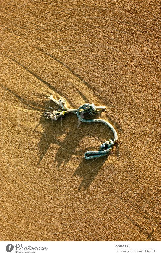 Burg aus Sand Strand Seil Sonnenlicht Sommer Schönes Wetter Farbfoto Licht Schatten Kontrast Vogelperspektive 1 Strandgut Sandverwehung Menschenleer braun